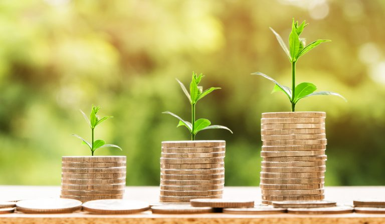Succession and assets: Especially for family businesses and foundations, it is important to preserve and increase wealth over generations.